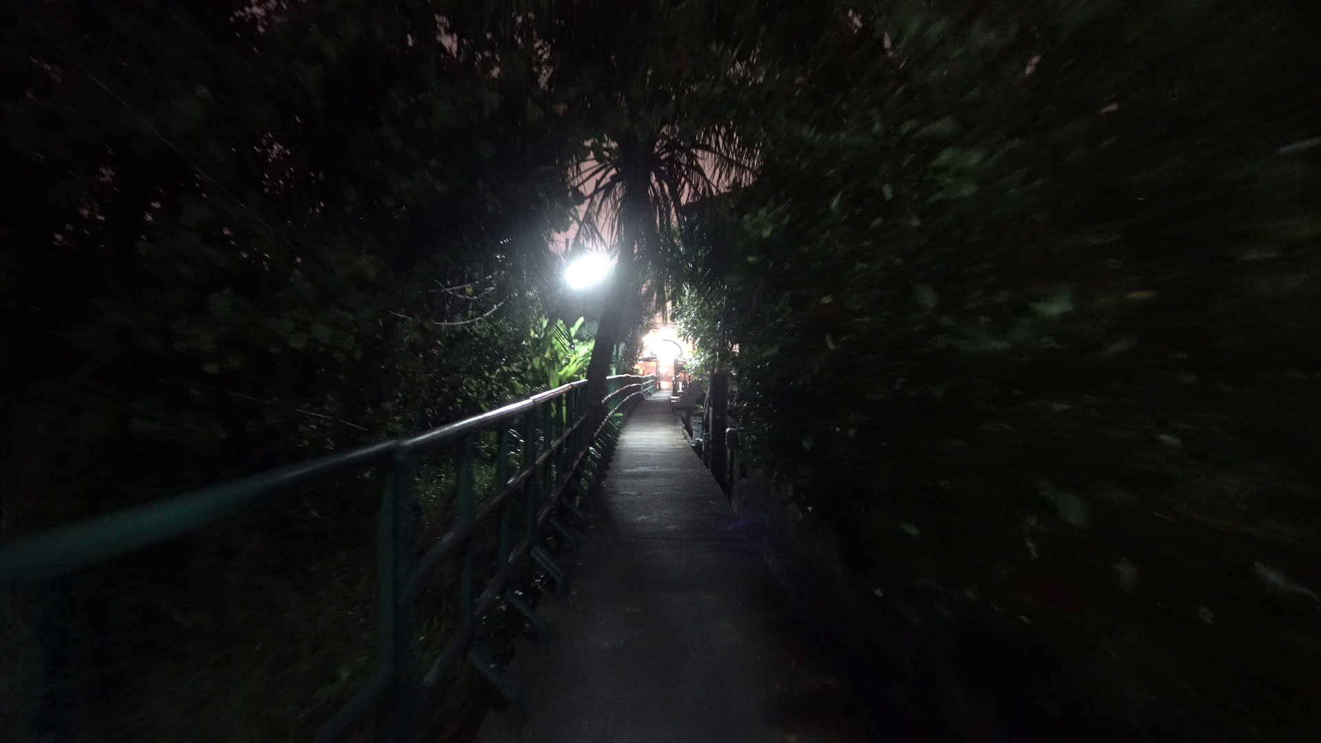 Night Stroll in Bang Kachao